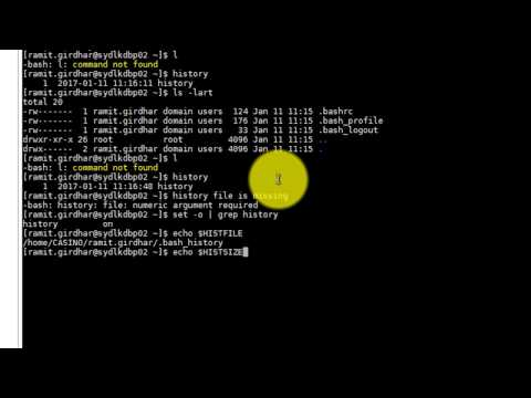How to Enable History In Bash