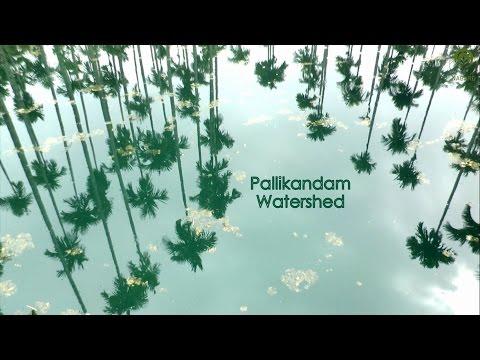 Pallikandam Watershed
