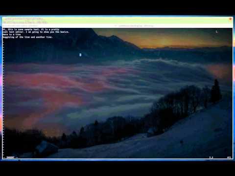 Vi on Linux - Basic Tutorial