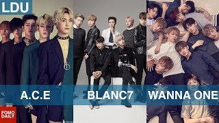 A.C.E, BLANC7, WANNA ONE (Rookie Boy Groups) • Like, DM, Unfollow