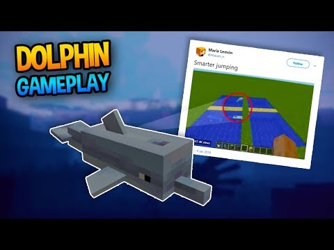 OFFICIAL DOLPHIN GAMEPLAY!! - Mincraft Update News
