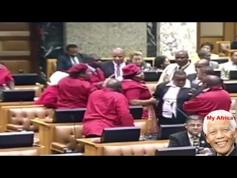 Chaos In South Africa National Assembly.