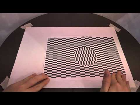 PPP Illusions Video