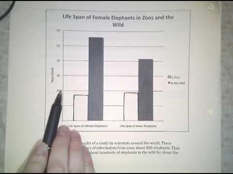 Life Span Graph