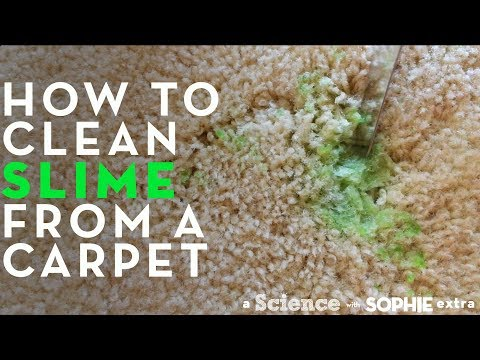 How To Clean Slime From a Carpet