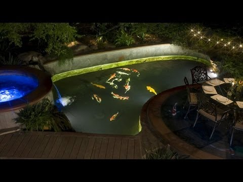 Should I Install Under Water Lights In My Koi Pond?