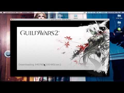 Guild wars 2 wineskin mac guide Works.