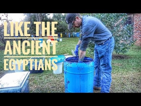 Dyeing with Indigo Plant Dye with Scott Peacock