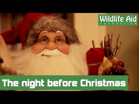 'Twas the night before Christmas read by Simon Cowell