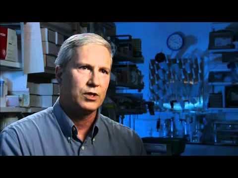 HPV Vaccine Development John Schiller Douglas Lowy