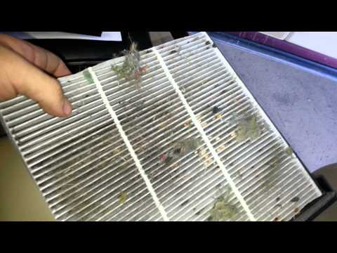 2010 Honda Crosstour Cabin Air Filter Change