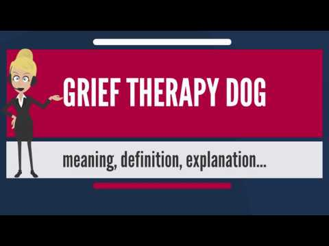 What is GRIEF THERAPY DOG? What does GRIEF THERAPY DOG mean? GRIEF THERAPY DOG meaning