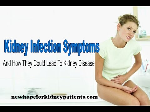 Kidney infection symptoms and how they could lead to kidney disease
