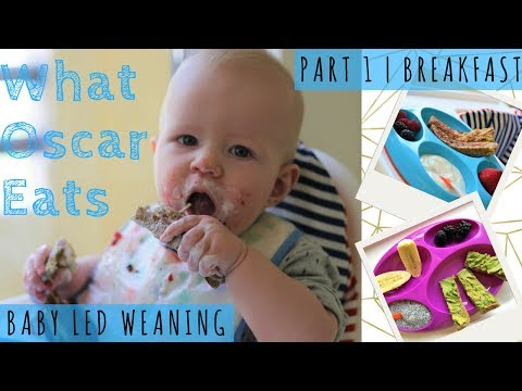 WHAT MY BABY EATS FOR BREAKFAST IN A WEEK | Baby Led Weaning
