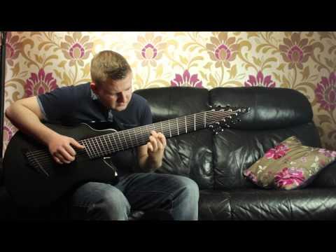 Amazing Acoustic Guitar 9 String Fan Fret