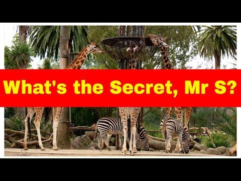 Unlock the Secret of Descriptive Writing