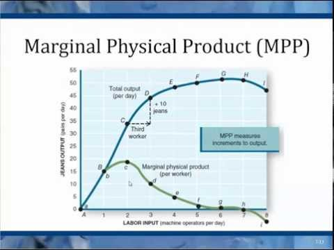 Chapter 7 Marginal Physical Product