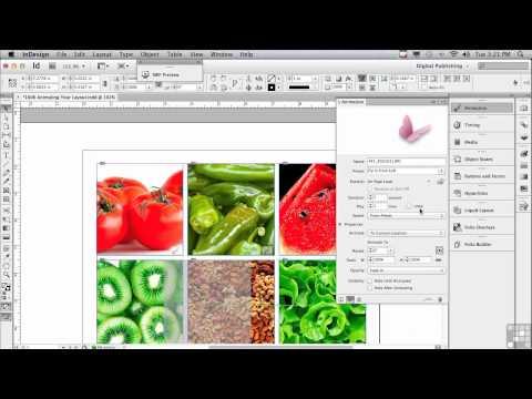Adobe InDesign CS6 Tutorials | Animating Layouts in InDesign | InfiniteSkills