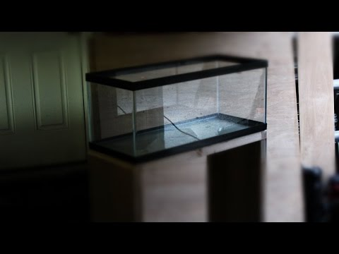 20 Gallon long aquarium stand build!