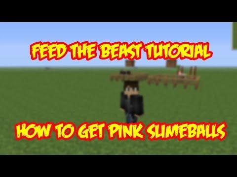 FTB - How to get pink slimeballs