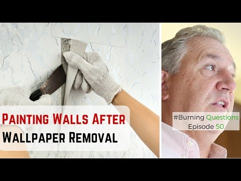 Painting Walls After Removing Wallpaper   Interior Painting Contractors from Naperville