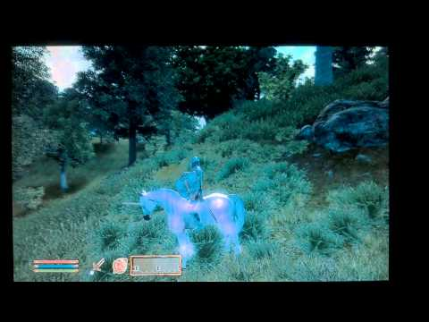 How To: Find the Unicorn in oblivion.