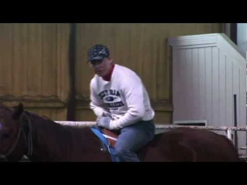 Bareback Riding Training to keep you from getting hurt!