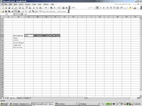 Excel 2003:  Formatting Cells