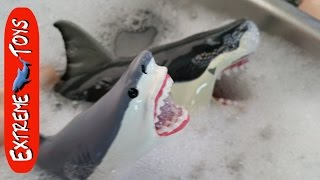 Shark Toys take a bath.  What sharks are in the bubbles?