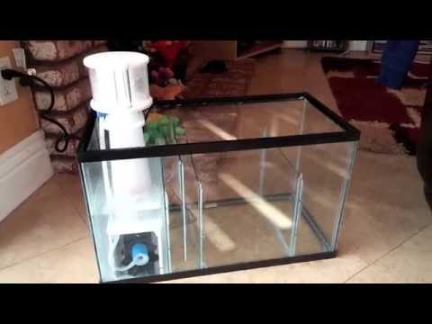 How to setup a 10 Gallon Nano Reef Tank, DIY Sump, SCA 301 protein skimmer setup