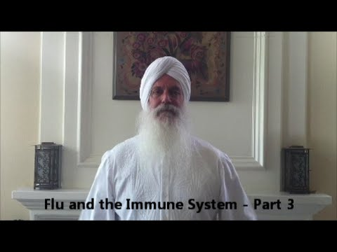 Chiropractor Pasadena CA Khalsa Chiropractic Flu and the Immune System - Part 3