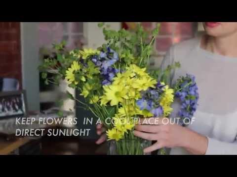 How to Keep Your Flowers Fresh Longer