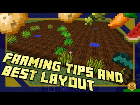 Minecraft | Farming Tips & Best Layout