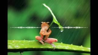 Rihanna - Umbrella (edric Remix)