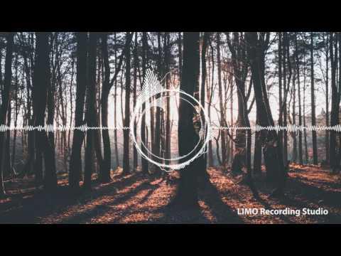Just Wanna Run (Ahlstrom Remix) -  Sebastian Forslund feat. Dinah Smith, Niklas Ahlström