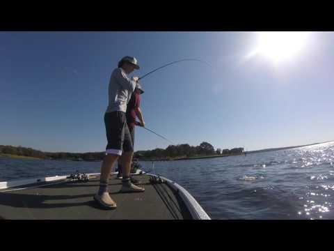 Lake Fork Carolina Rigging