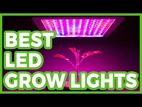 10 Best LED Grow Lights - The Best LED Grow Light 2018