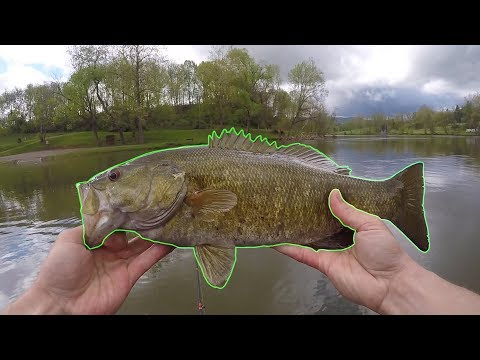 Catching River Smallmouth on Spinnerbaits (New River)