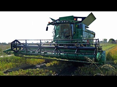 John Deere S680i -MY2016- mietitura riso / rice harvest 24/09/2016