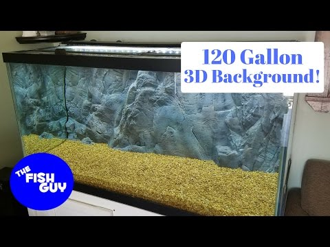 New Build!  120 Gallon Freshwater with an In-Tank 3d Background!
