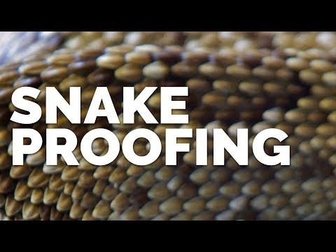 Snake Proofing with Sublime Canine