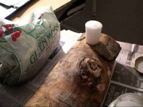 113: 21 Days of Yule: How to Make a Yule Log