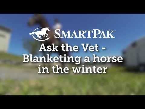 Ask the Vet - Blanketing a horse in the winter