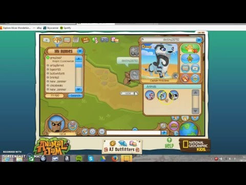 animal jam member accounts 2015 november