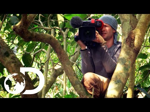 Behind-The-Scenes With Discovery's Cameramen
