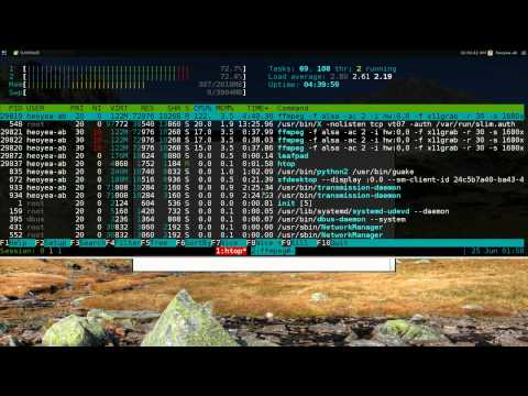 Htop - Task Manager - Linux TUI