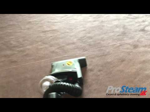 Commercial wool carpet cleaning demo
