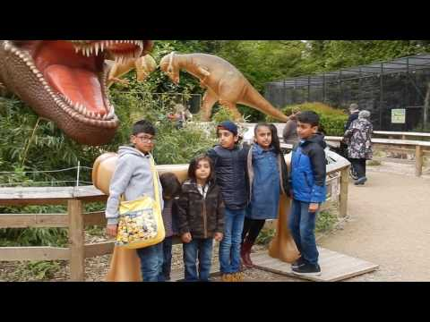Drayton Manor-Thomas Land,Dino Land & Reptile island