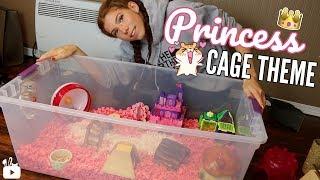 Hamster bin cage Videos - 9tube tv