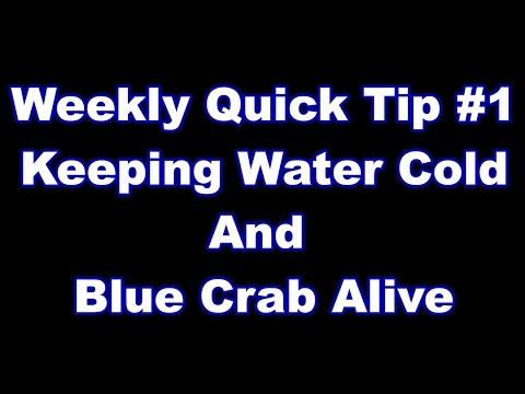 Blue Crabs and Water bottles - Quick Tip #1 keeping things cool in Texas